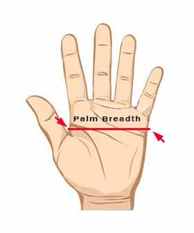 Palm breadth measure guide